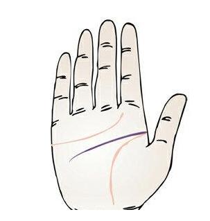 智慧线横越过手掌是什么意思